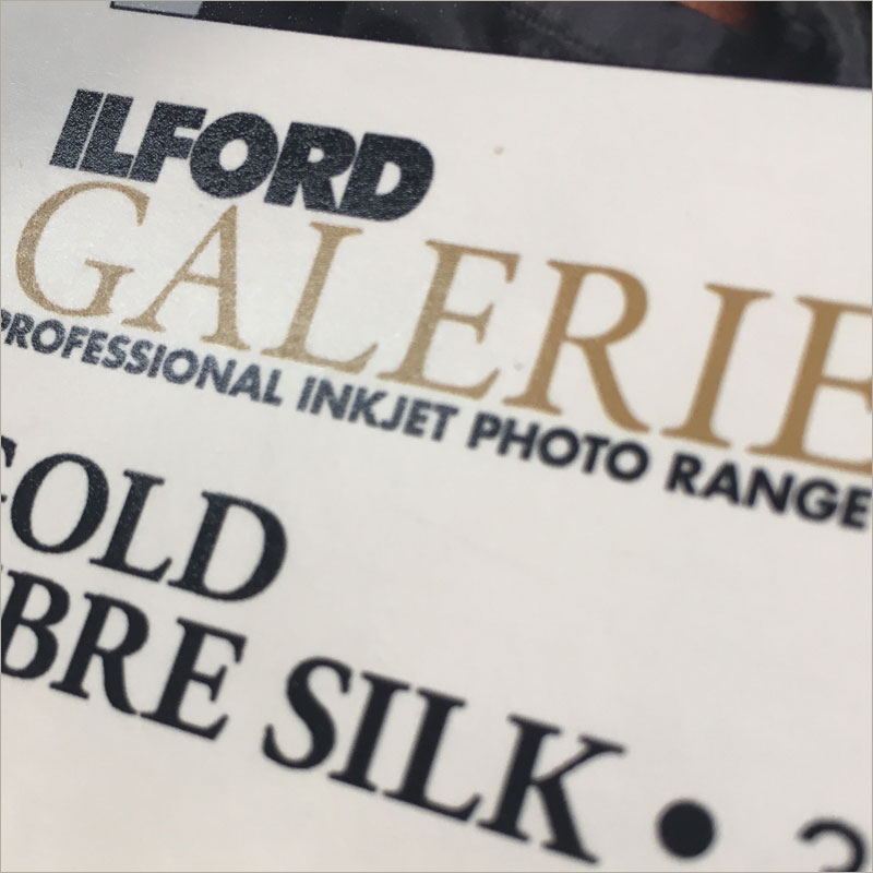 Gold Fibre Silk